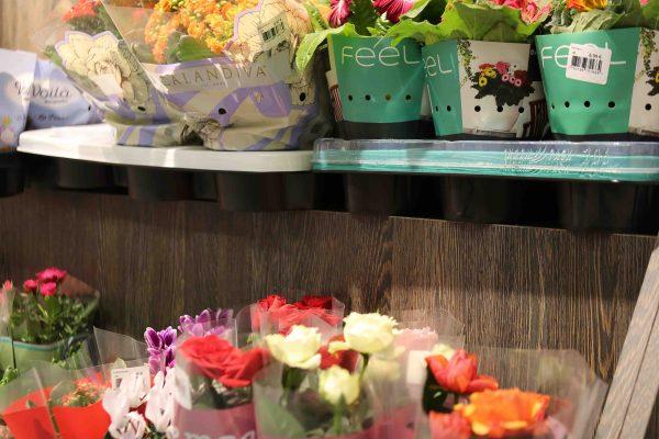 meuble présentoir fleurs